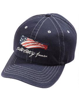Winds of Freedom Midnight Twill Hat